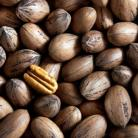 PECAN NUTS IN SHELL 1KG